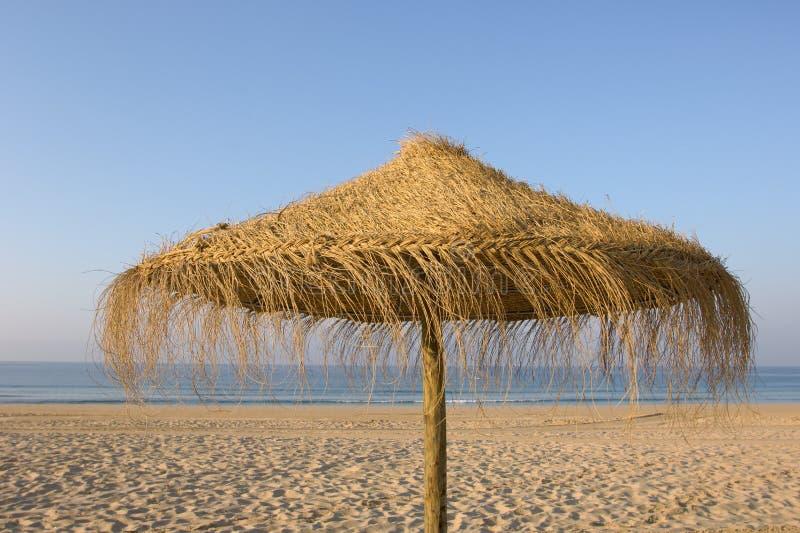 tropiskt paraply för strand arkivbild