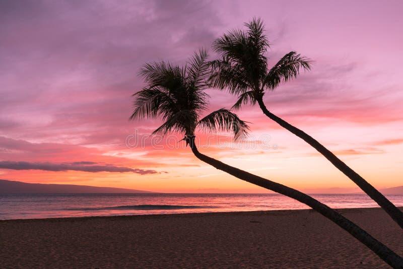 Tropiskt solnedgånglandskap på Maui arkivfoton
