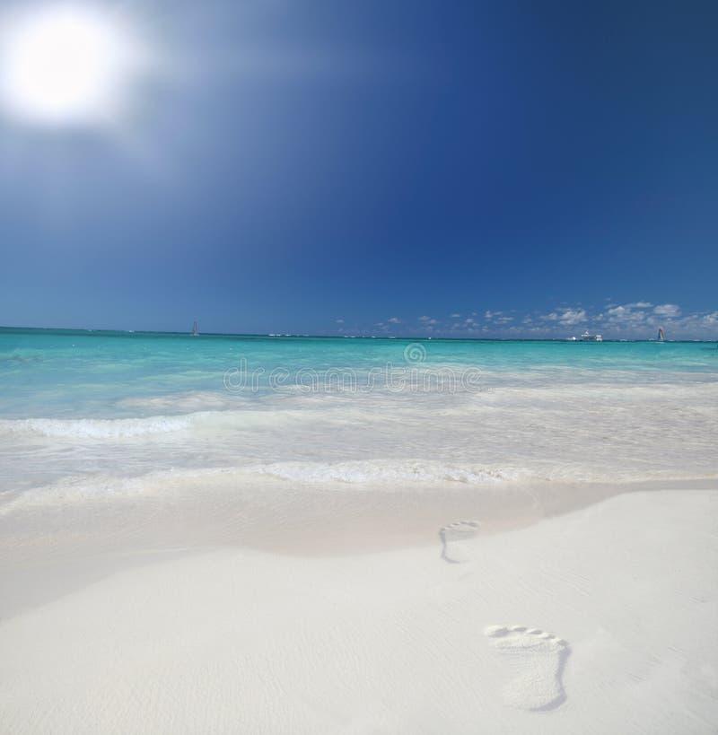tropiskt strandfotspårhav royaltyfria bilder