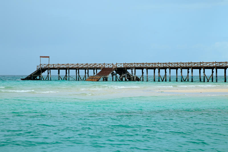 tropiskt trä för strandpir royaltyfri bild