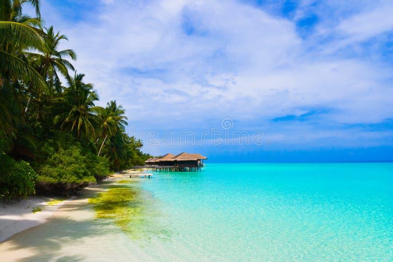 tropiskt vatten för bungalowö fotografering för bildbyråer