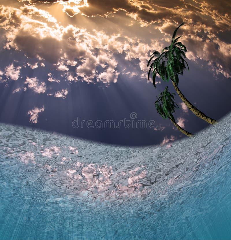 tropiskt vatten vektor illustrationer