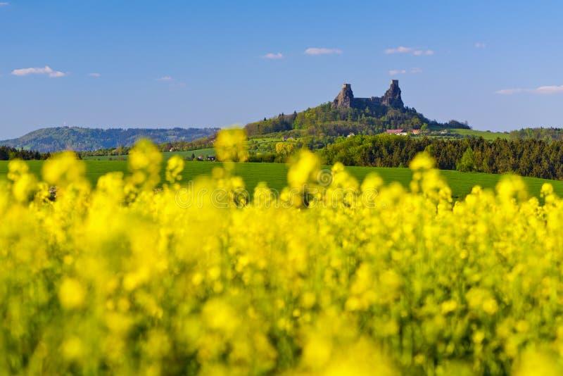 Trosky Castle, Czech Republic. Spring landscape with trees, fields and Trosky Castle. Czech Republic royalty free stock photography