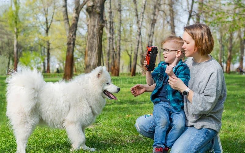 Troszkę chłopiec i jego mamy sztuka z puszystym Samoyed psem w parku w wiośnie i zdjęcia royalty free