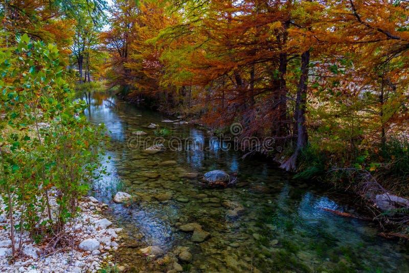 Troszkę Papla strumyk z Oszałamiająco spadku Cyprysowymi drzewami fotografia royalty free