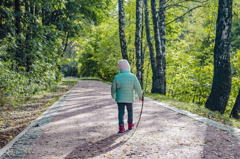 Troszkę zielenieje parka dziewczyna z gałąź w jej rękach w obrazy stock