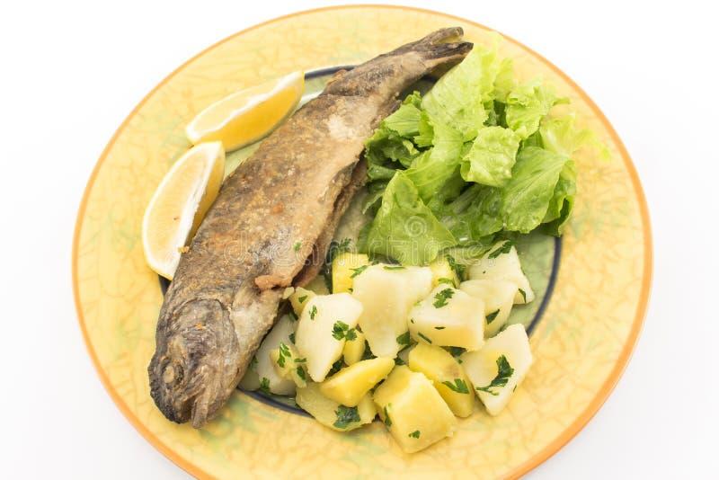 Trota iridea fritta con le patate e l'insalata verde immagini stock