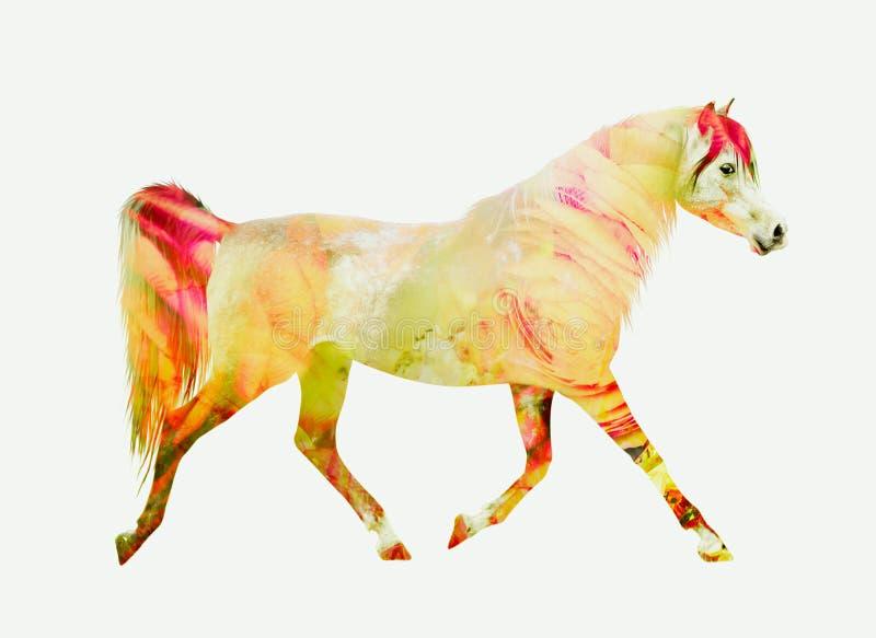 Trote del funcionamiento del caballo, exposición doble roja amarilla imagenes de archivo