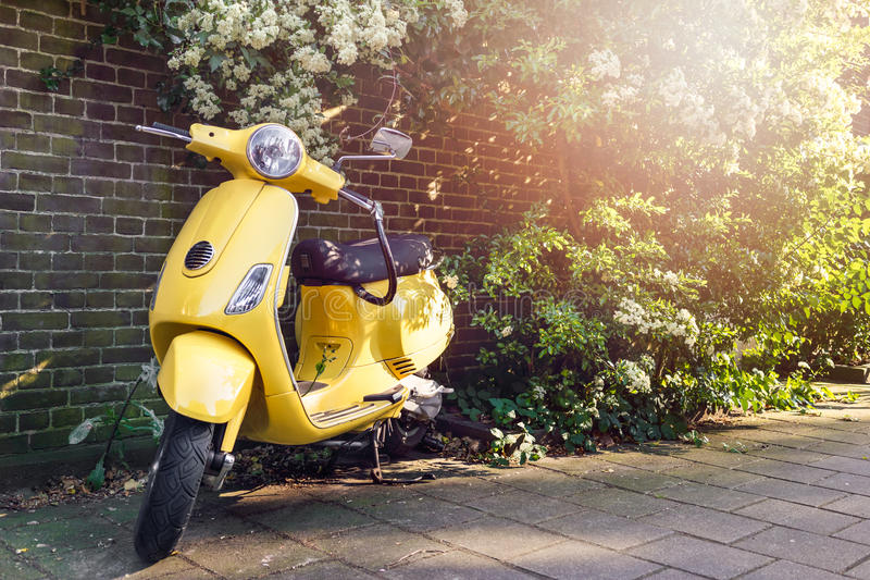 'trotinette' amarelo estacionado fotografia de stock royalty free