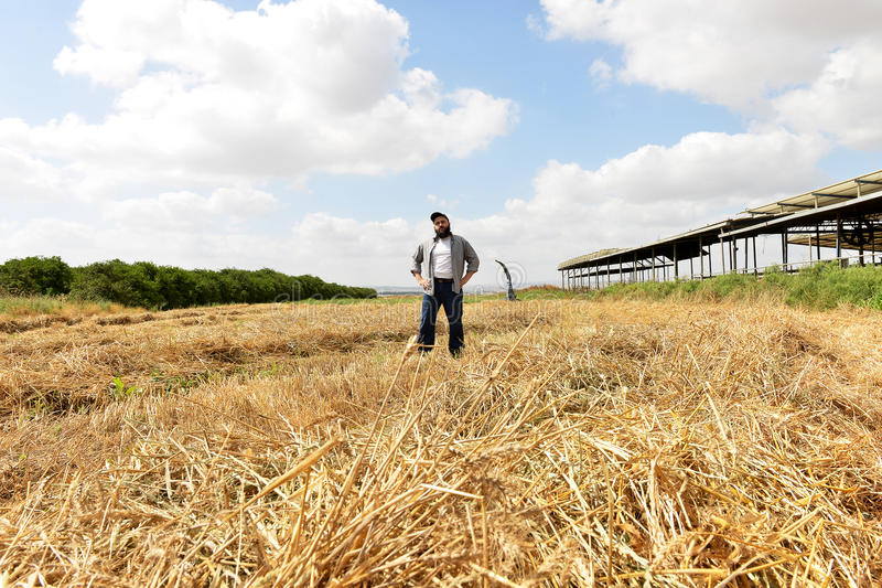 Trotse landbouwer die zich in het midden van zijn gebied bevinden royalty-vrije stock fotografie