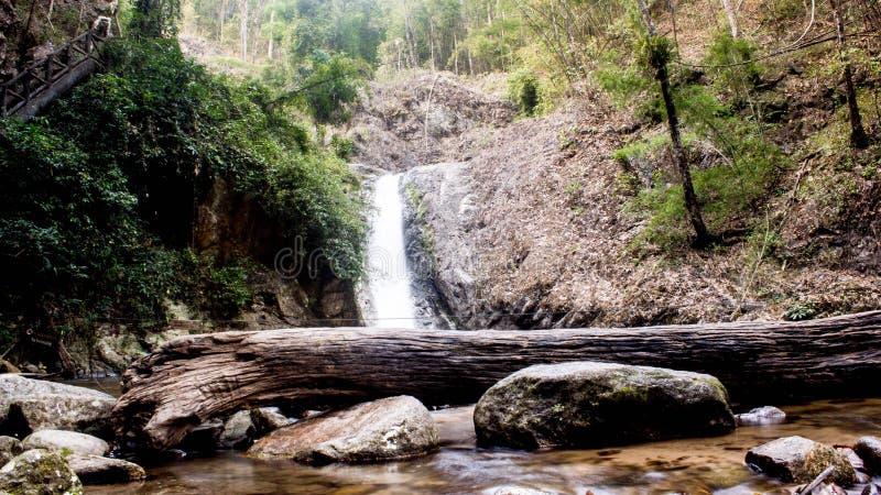 Trottoar för vattenfallskoggranskning royaltyfria bilder