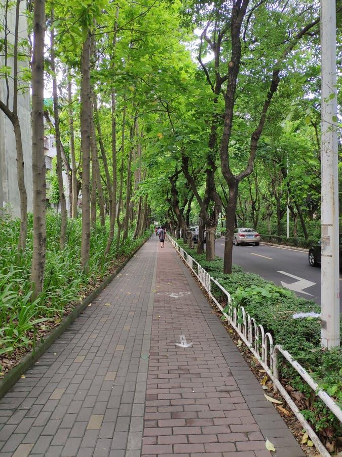 Trottoar i OKTOBER, Shenzhen, Kina royaltyfri foto