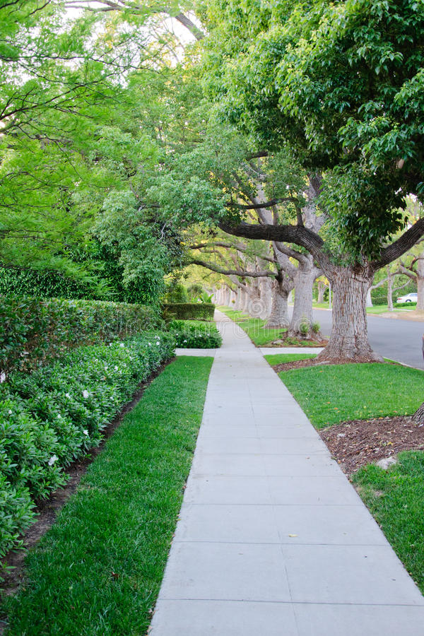 Trottoar på beverly hillls i Kalifornien royaltyfria foton