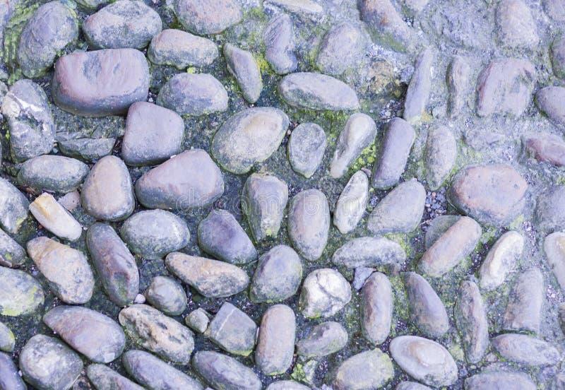 Trottoaren som stenläggas med havsstenar parkerar in, i Catania, Sicilien, Italien arkivfoto