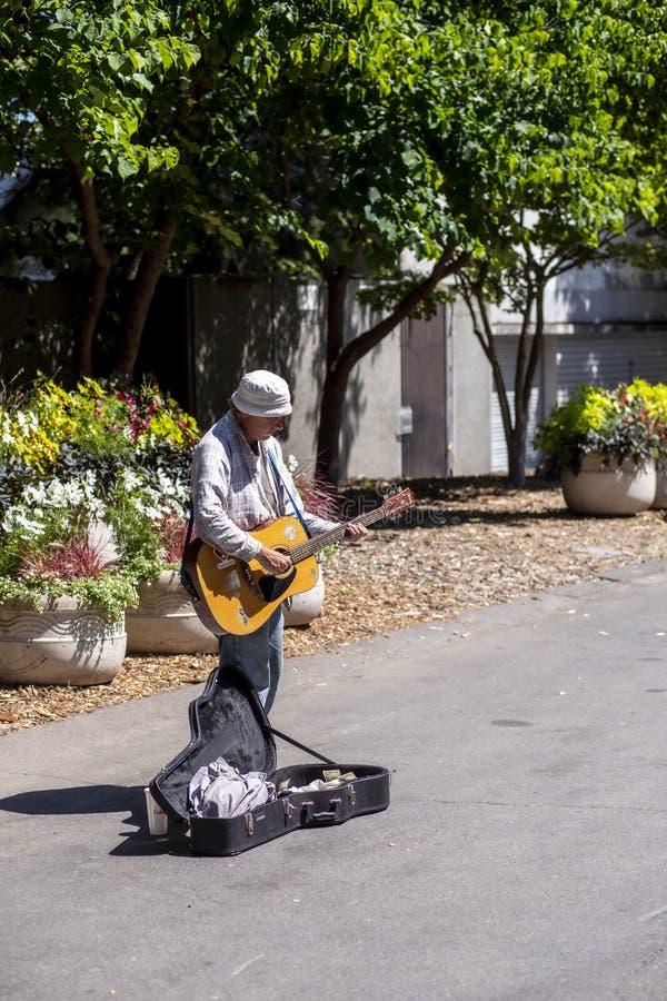 Trottoarmusiker på en solig dag i Seattle royaltyfri fotografi