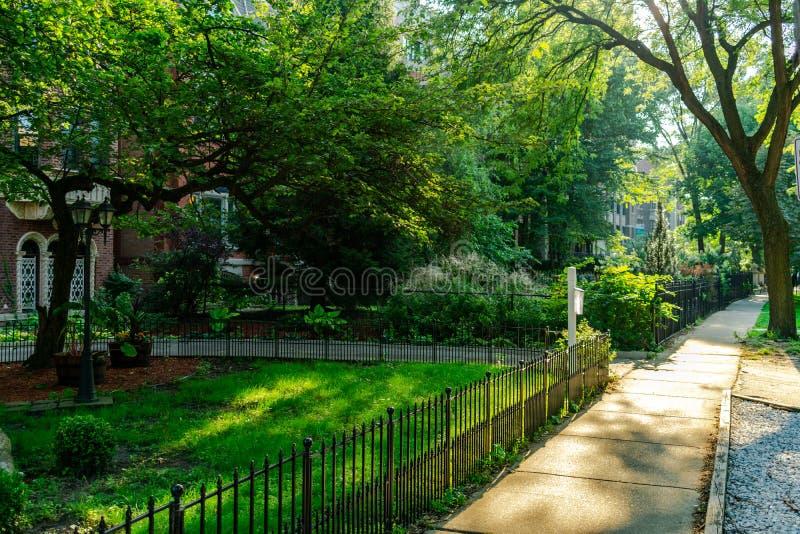 Trottoir bordé d'arbres dans Lincoln Park Neighborhood de Chicago pendant l'après-midi image stock