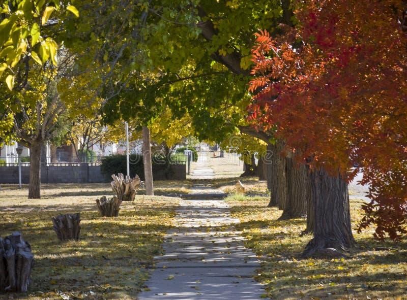 trottoir d'automne photo libre de droits