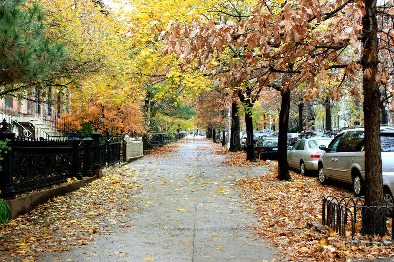 Trottoir de New York photos stock