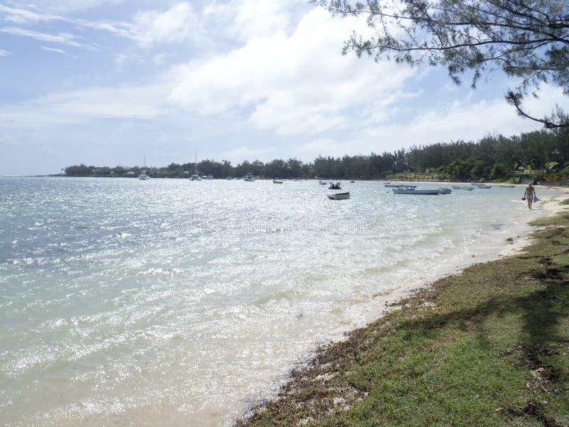 Trou-aux.-Biches, Îles Maurice photographie stock libre de droits