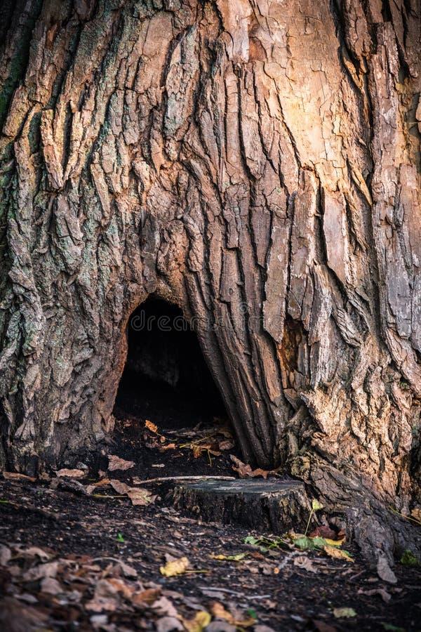 Trou de Hobbit photo libre de droits