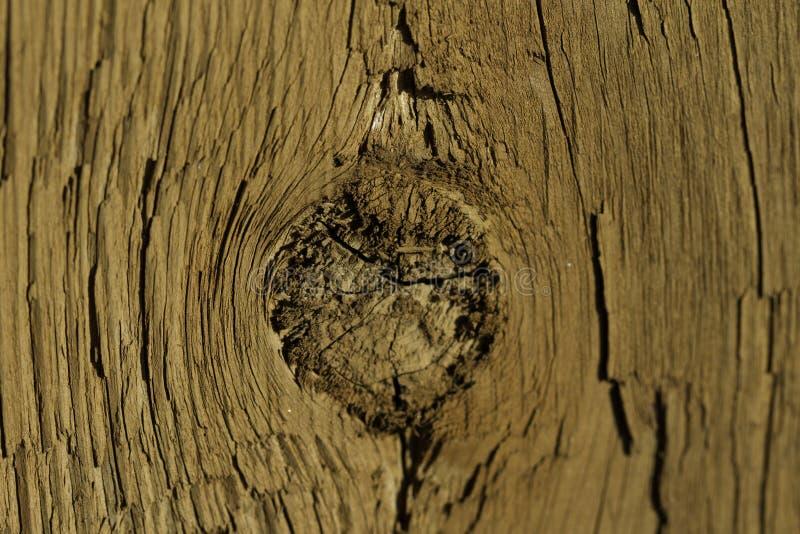 Trou de noeud en bois photographie stock libre de droits