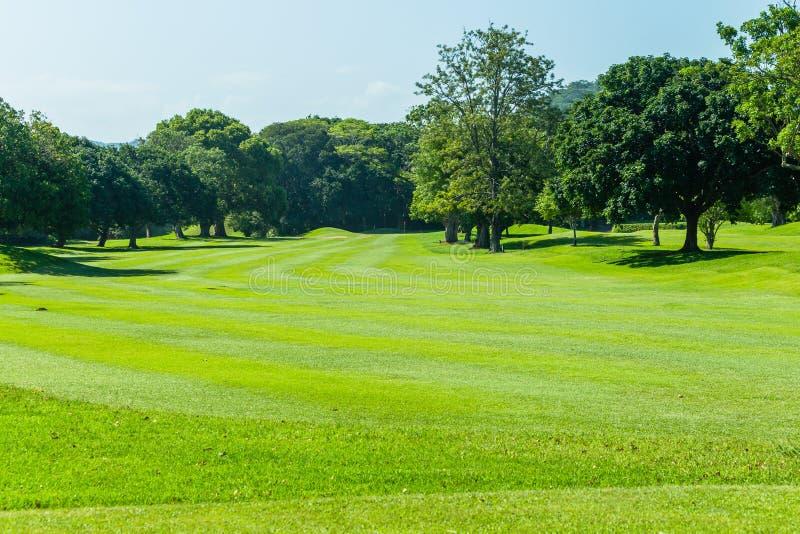 Trou scénique d'arbres de terrain de golf photos stock