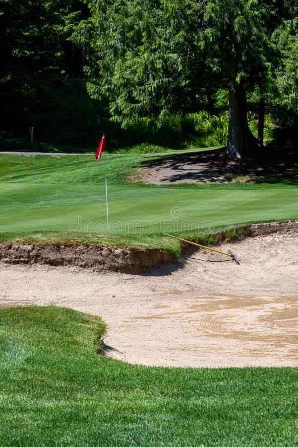 Trouble on the golf course, sand trap protecting a golf green with trees in the background, includes sand rake and pin with red fl. Ag royalty free stock photos