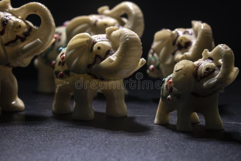 Troupeau d'éléphants blanc-modelés Projectile lat?ral Fond noir photographie stock libre de droits