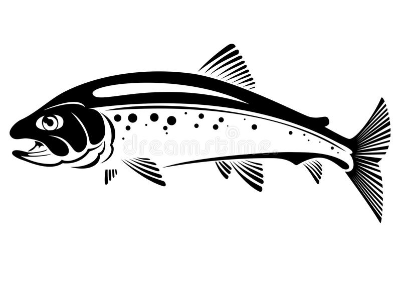 Trout fish. Vector symbol of trout fish stock illustration