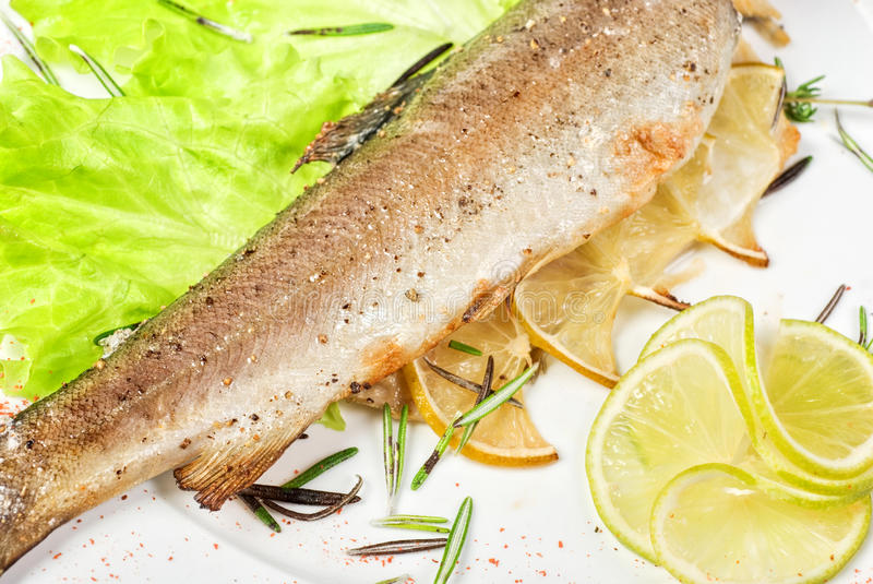 Download Trout fish stock image. Image of cuisine, mediterranean - 14057775