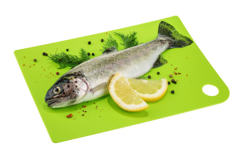 Trout fish isolated on white royalty free stock image