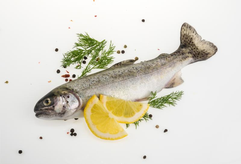 Trout fish with spices top view royalty free stock photos