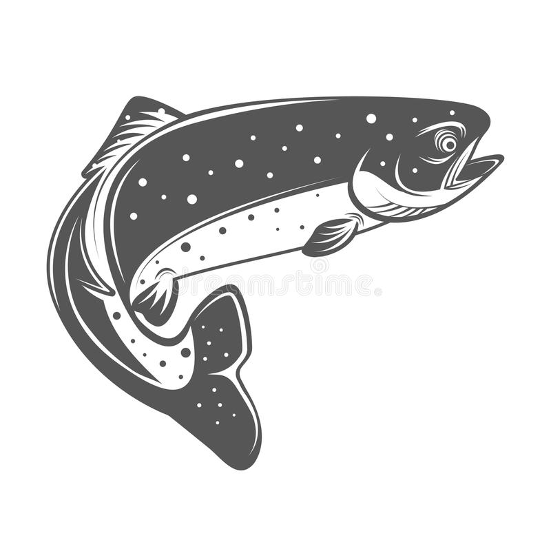 Trout fish vector illustration in monochrome vintage style. Design elements for logo, label, emblem. Isolated on white background royalty free illustration