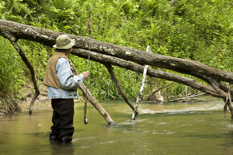 Trout fisherman. Fisherman looking downstream dressed in waders and trout vest royalty free stock photography