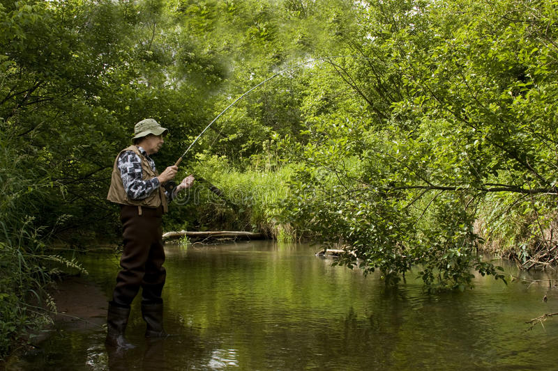 Trout fishing. Trout fisherman in a stream wearing waders and using a flyrod stock photography