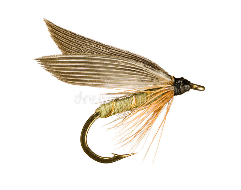Trout Fishing Fly stock photos