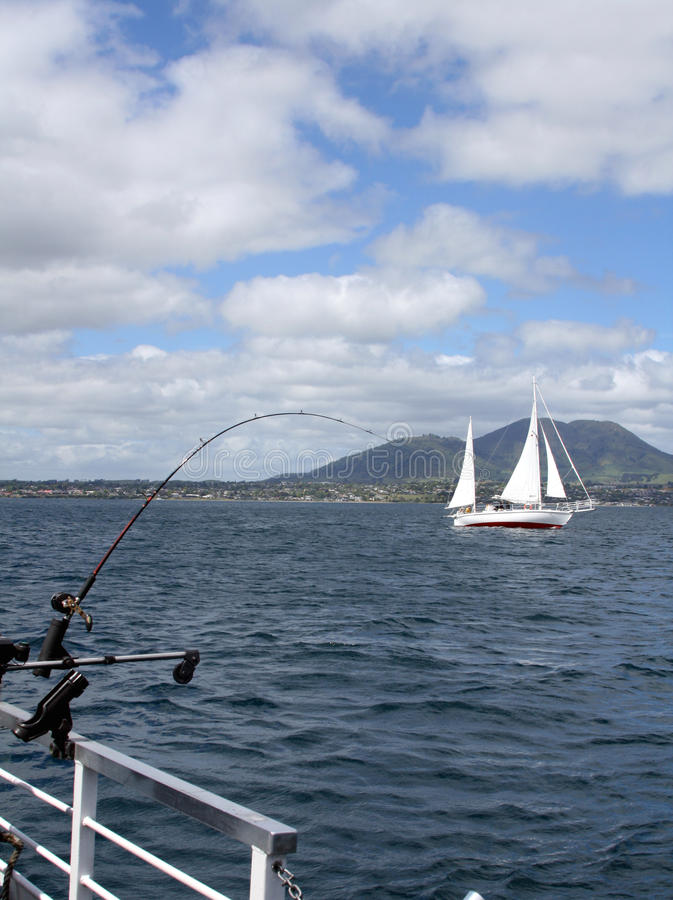 Trout fishing Lake Taupo, New Zealand