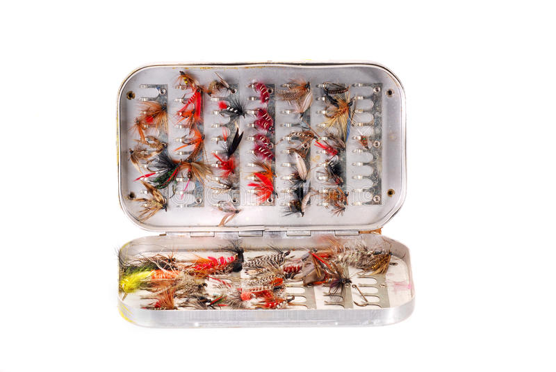 Download Trout flies in a box stock image. Image of flies, colorful - 24376029