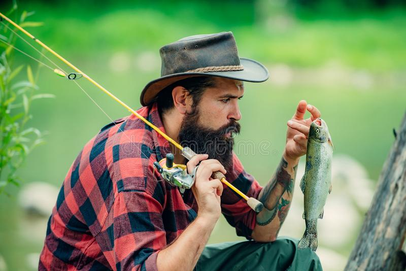 Trout on a hook. Fly fishing - method for catching trout. Fishing with spinning reel. Catches a fish. Fishing in river stock image