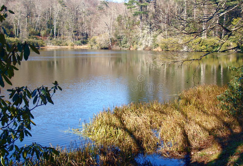 Trout Lake. A hiking trail at Moses Cone Memorial Park near Blowing Rock, North Carolina leads to small, but scenic, Trout Lake stock photo