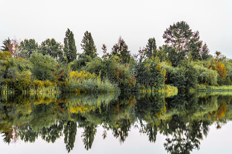 Trout Lake Park in Vancouver, Canada. Photo of Trout Lake Park in Vancouver, Canada stock photo