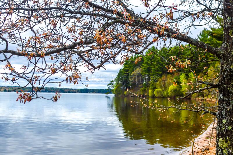 Trout Lake, Villas County, Wisconsin. Trout Lake is one of the largest lakes in Vilas County, Wisconsin. Near the towns of Boulder Junction and Arbor Vitae royalty free stock image