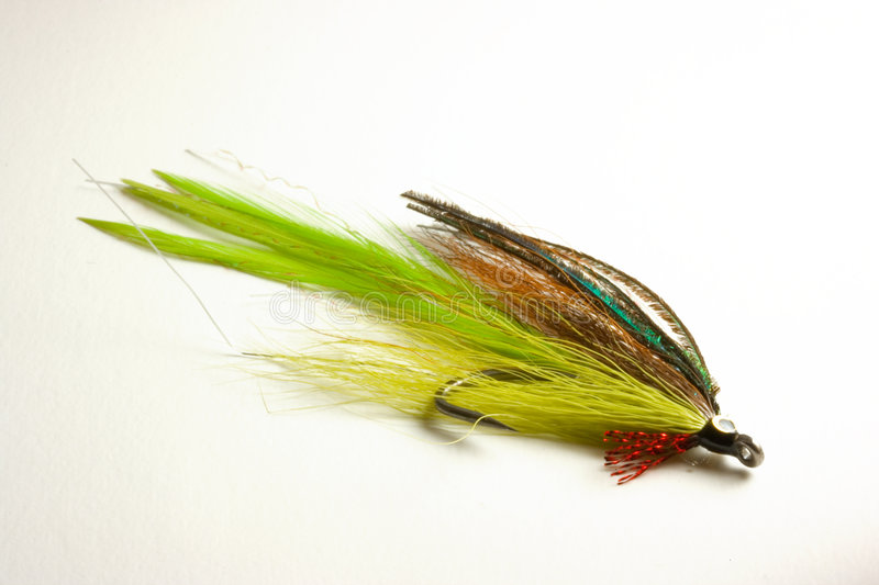 Trout lure for fly fishing. Hand tied minnow fishing fly for trout or bass fly fishing stock images