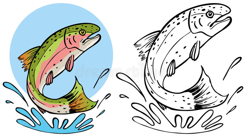 Trout Splashing. A cartoon image of a trout splashing in the water - both color and black / white versions royalty free illustration