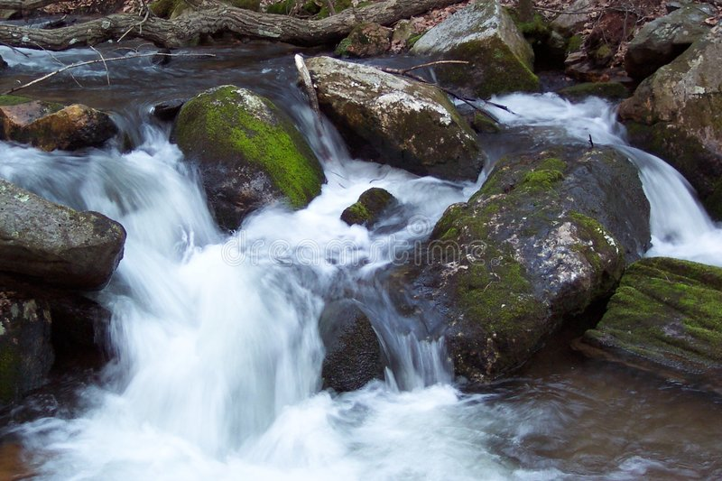 Download Trout Stream stock image. Image of rushing, spring, water - 8423