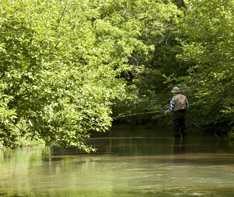 Trout stream. With trees and leaves in the background with a fisherman on the water stock photos