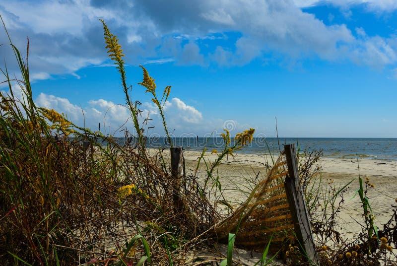 Trouvez la paix le long de la côte images stock