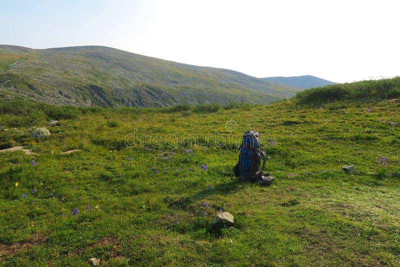 Trouxa no prado com as montanhas no fundo verão que caminha a imagem inspirador Espa imagens de stock royalty free