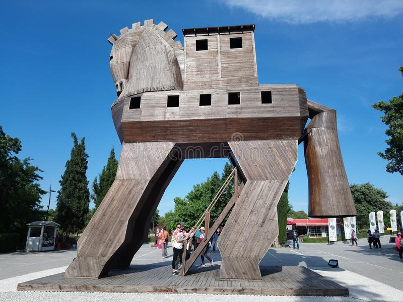 Troy häst från Anatolien arkivfoto