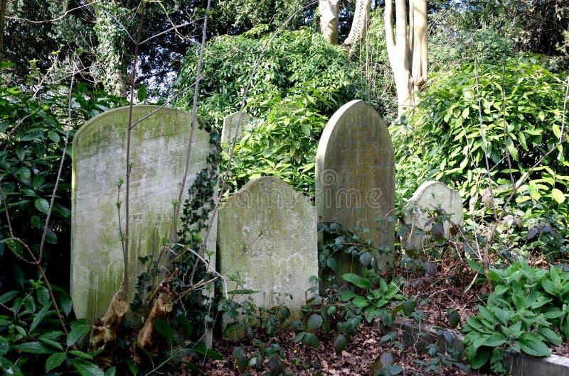 Trreegrafzerken in Engels kerkhof royalty-vrije stock afbeelding